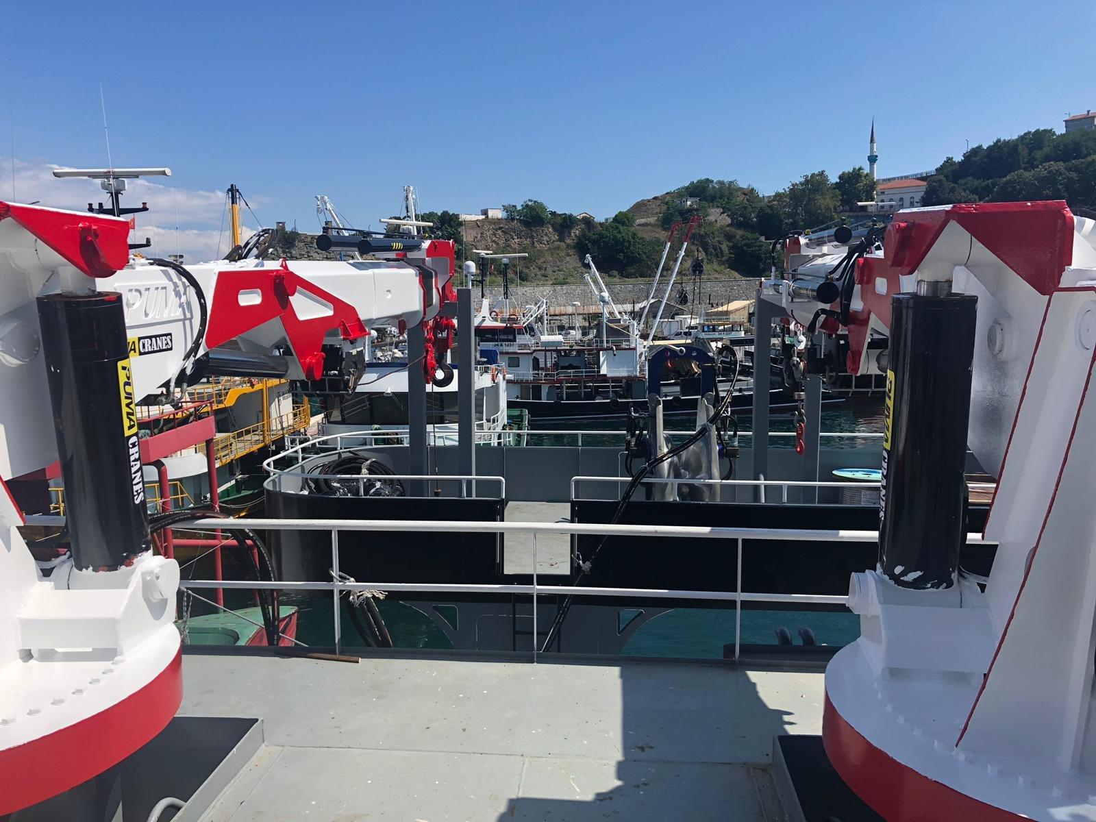 puma-marine-crane414983.jpg