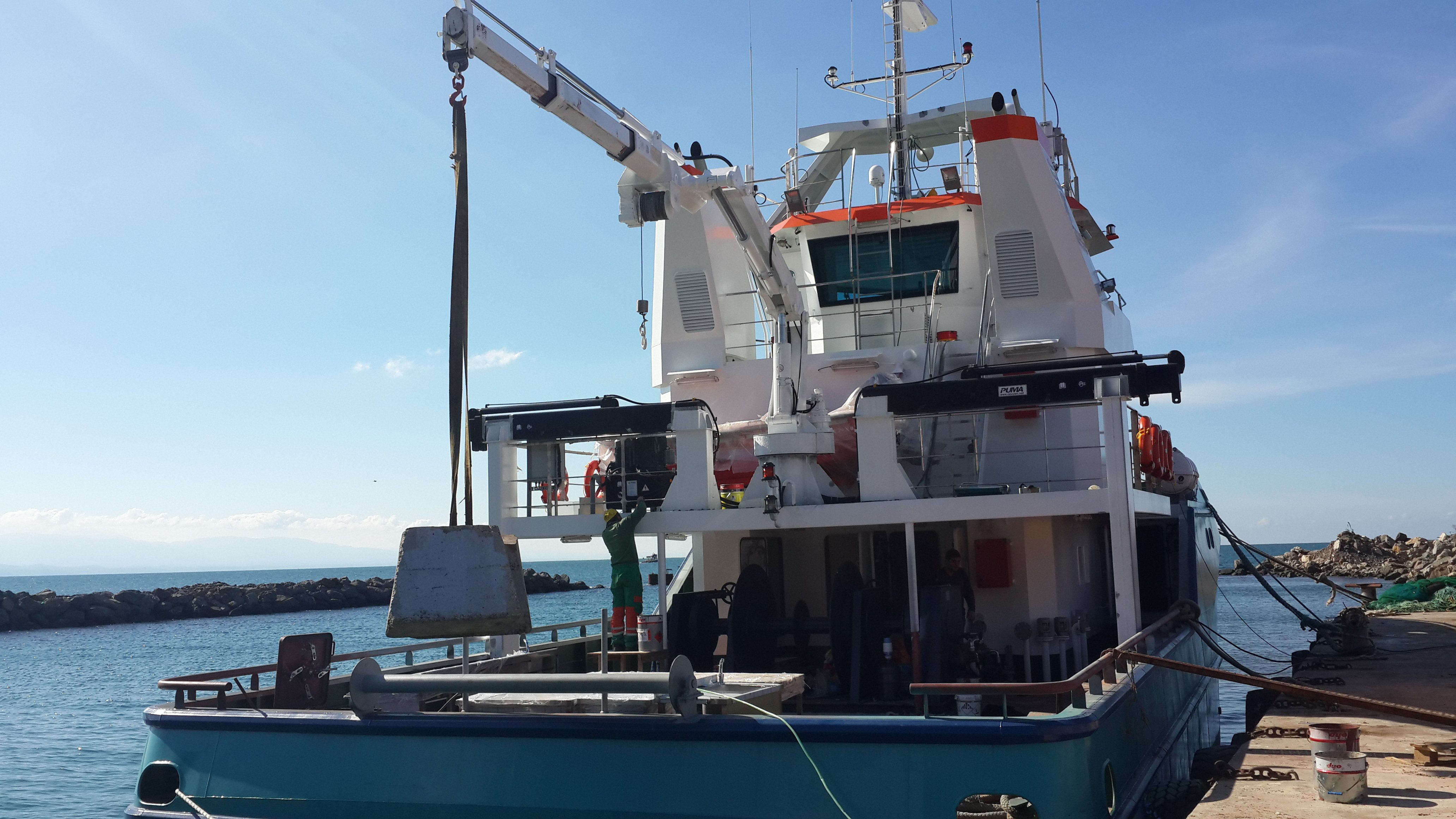 puma-marine-crane474543.jpg