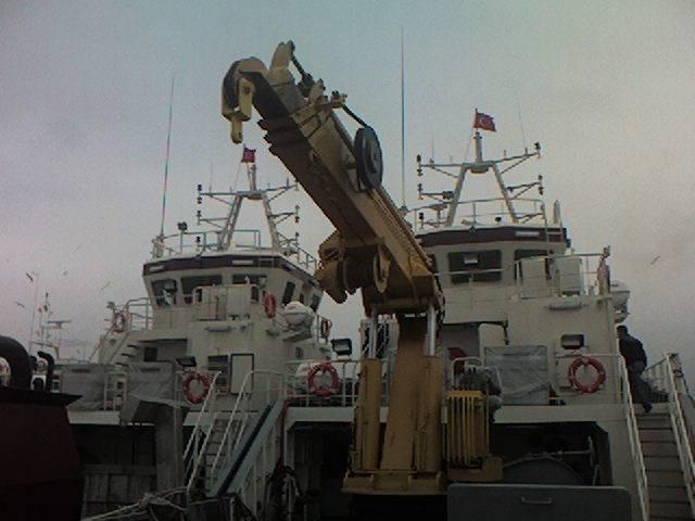 puma-marine-crane525954.jpg