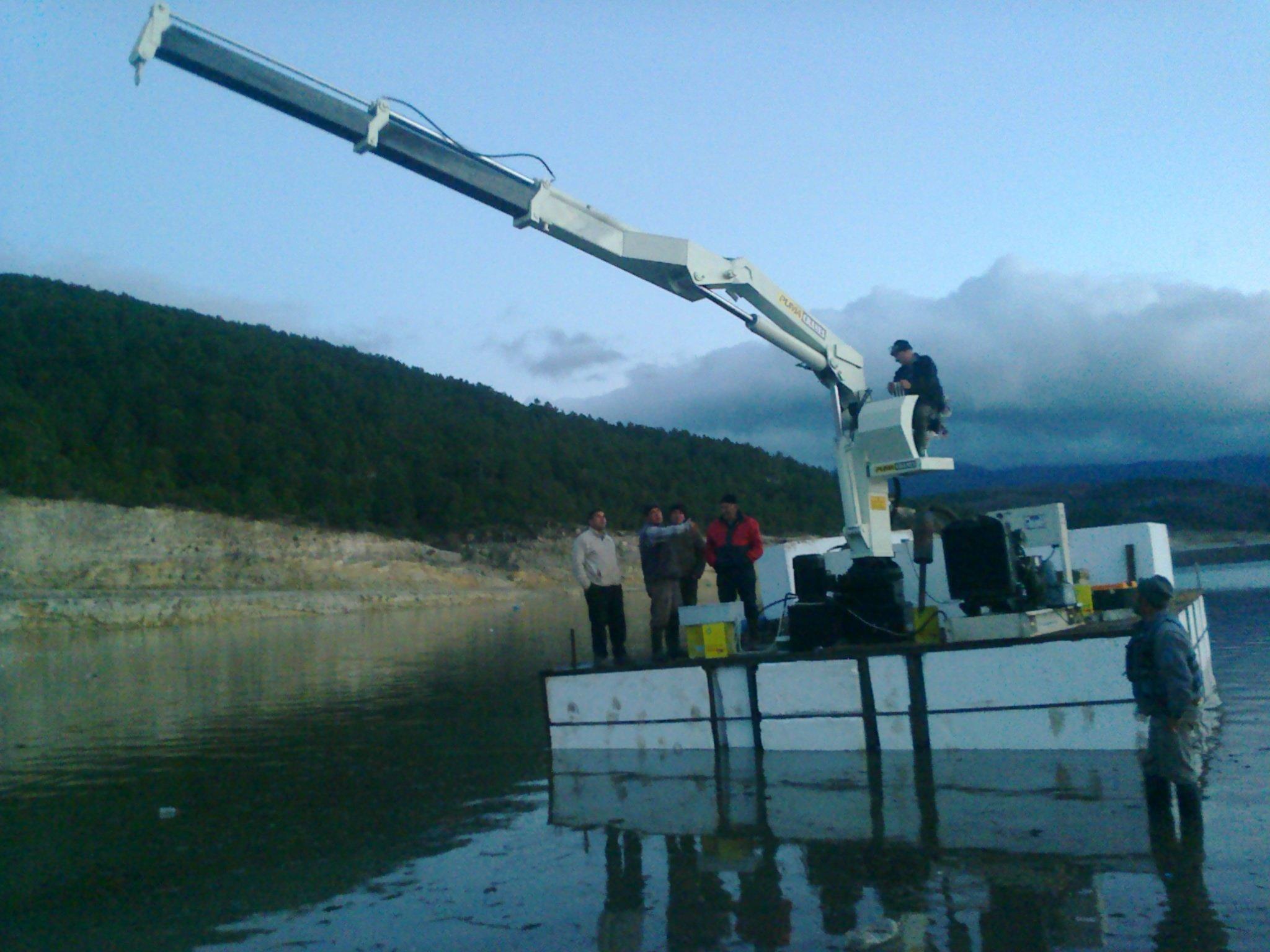 puma-marine-crane72880.jpg