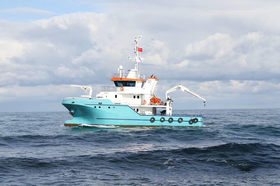 puma-marine-crane756206.jpg