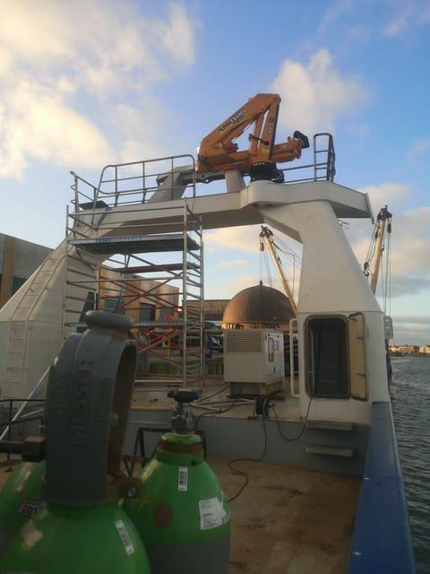 puma-marine-crane968766.jpg
